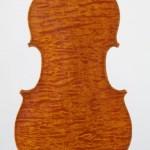 Viola back view