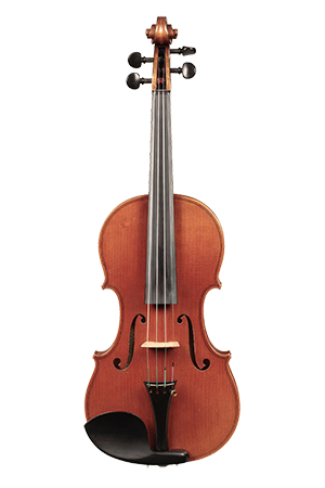 David Folland Violin